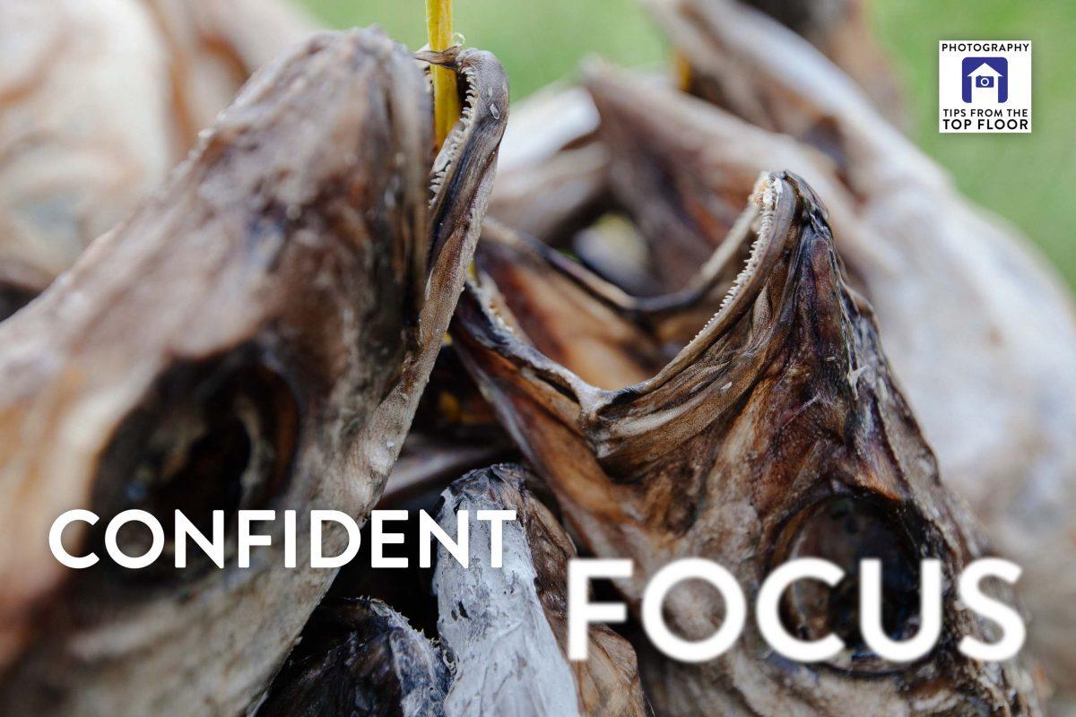 tfttf743 – Confident Focus