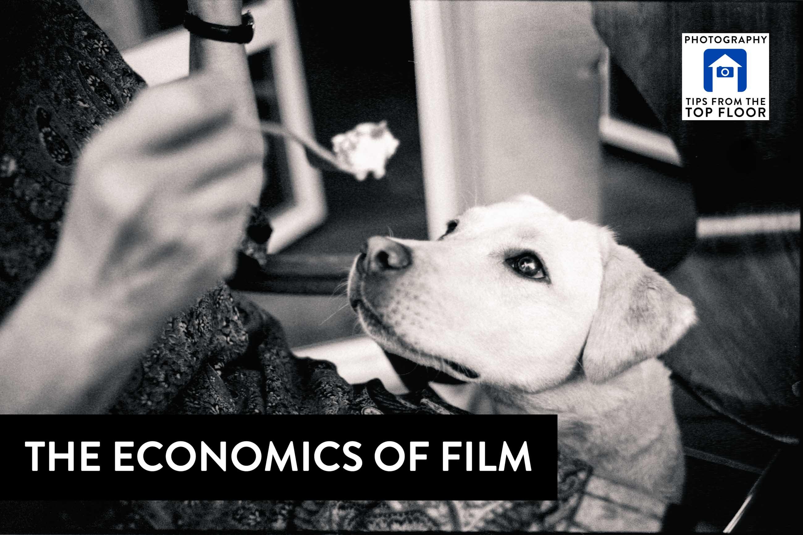 Economics in film